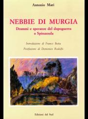 nebbie-murgia